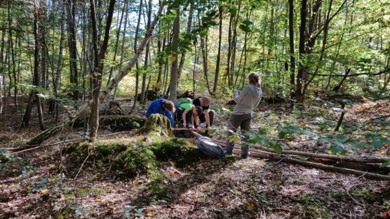 familien-wald-erlebnis-kurs-outdoor