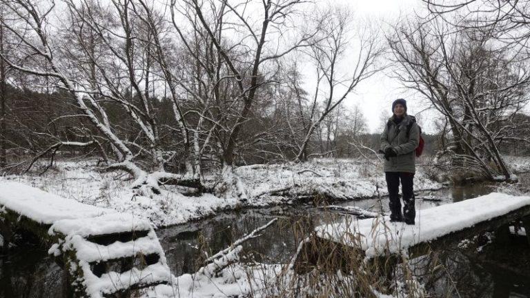 auszeit-im-winter-natur-geniessen-angebote-wildnispaedagogik