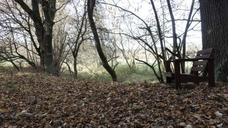 natureinklang-platz-eschenbach-oberpfalz