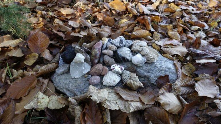 steine-herbstlaub-symbol-kosten